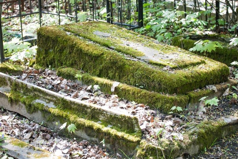 Monument grave de cimetière de pierre couvert de vue de plan rapproché de mousse photo libre de droits