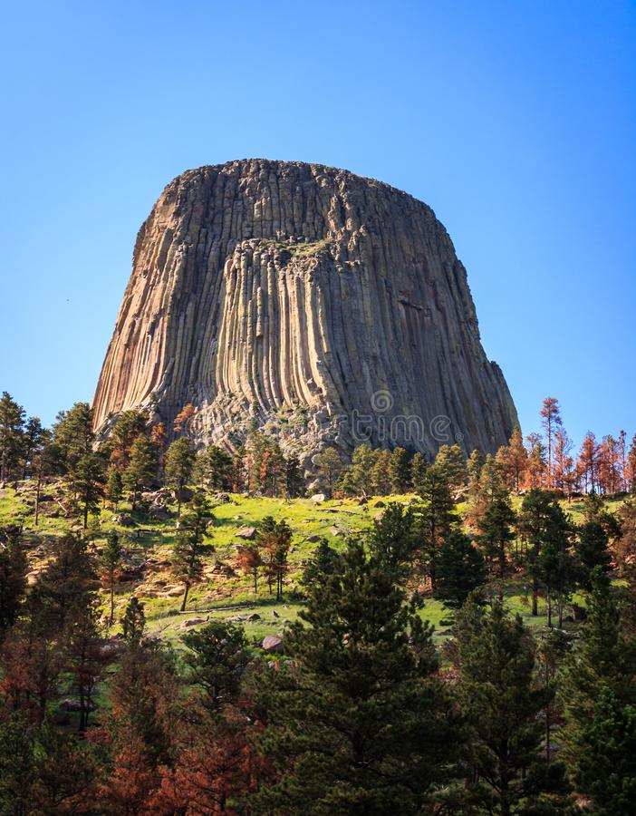 Monument national de tour du ` s de diable au Wyoming image stock