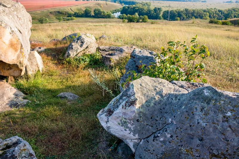 The monument of nature is megalith `Horse Stone` Kon kamen in the valley of the Krasivaya Mecha River. Kozie village, Efremovskiy district, Tulskaya region royalty free stock photo