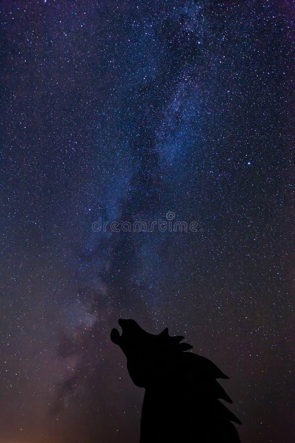Monument sauvage de chevaux avantageux et manière laiteuse photographie stock libre de droits