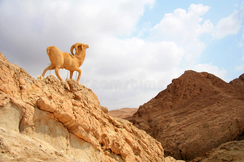 Monument of sheep, chebika, tunisia stock photo