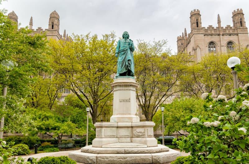 Monument till Carl Linnaeus i Hyde Park av det Chicago universitetet, USA royaltyfri fotografi