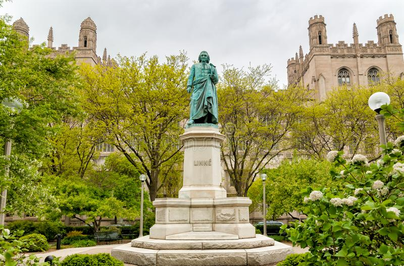 Monument to Carl Linnaeus in the Hyde Park of Chicago University, USA royalty free stock photography