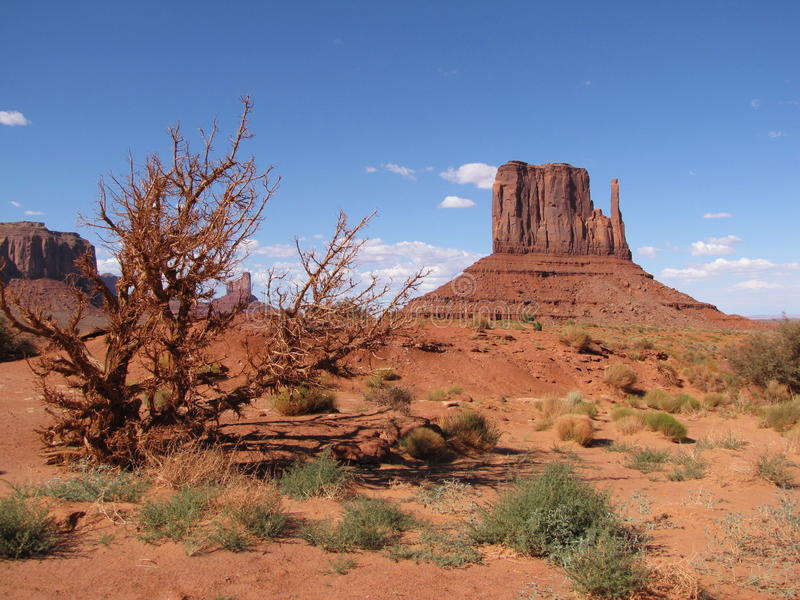Download Monument Valley stock photo. Image of mesas, isolated - 10895274