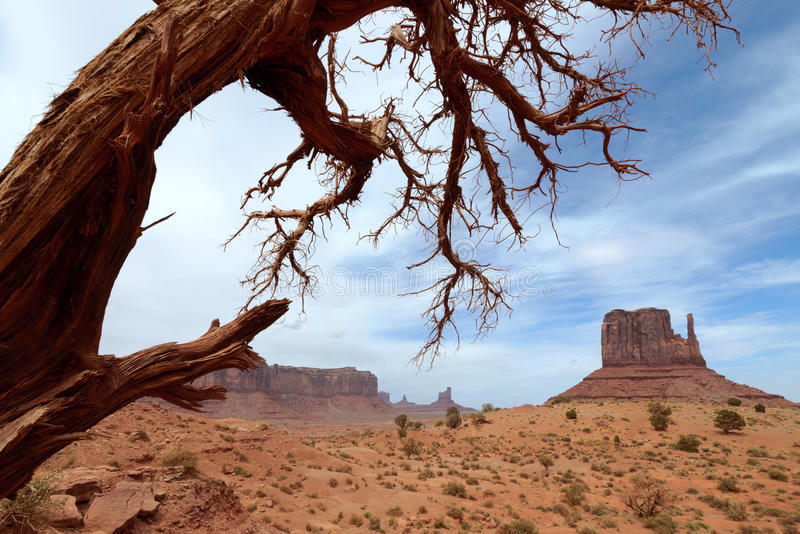 Download Monument Valley stock photo. Image of butte, nature, monument - 26246566