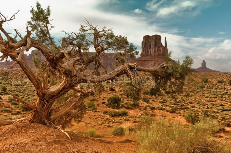 Monument valley. Navajo tribal park, USA. royalty free stock image