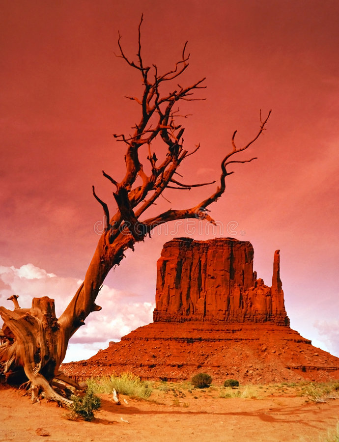Monument Valley's West mitten royalty free stock photos