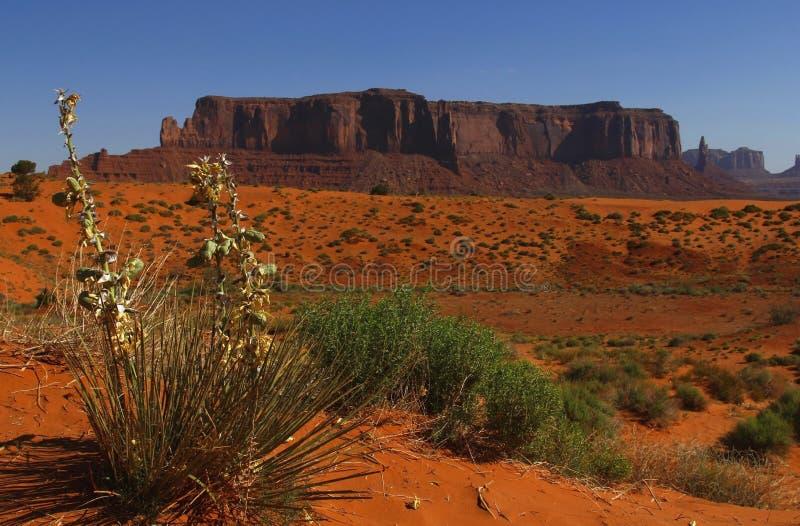 Monument Valley, Utah, USA Stock Image