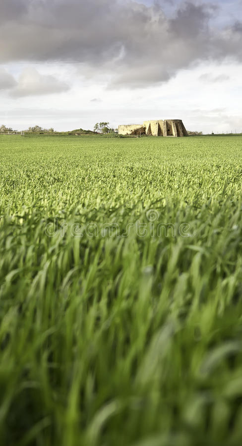 Monument and wheat royalty free stock photos