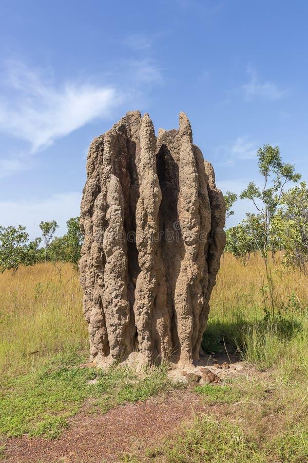 Monumentalny termitu kopiec w Kakadu parku narodowym, P??nocny Australia na pi?knym s?onecznym dniu, zdjęcie stock