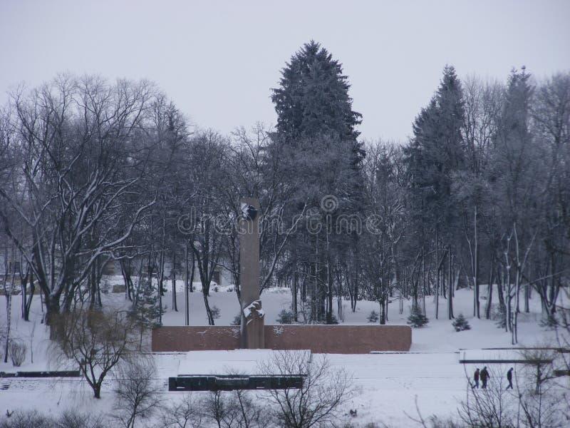 Monumentet av det stora patriotiska kriget av 1941-1945 i snö-täckt parkerar arkivfoton