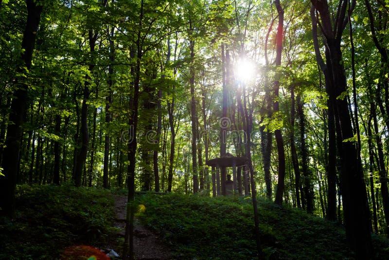 Monumenti famosi nel parco di Stramberk Sipka fotografia stock libera da diritti