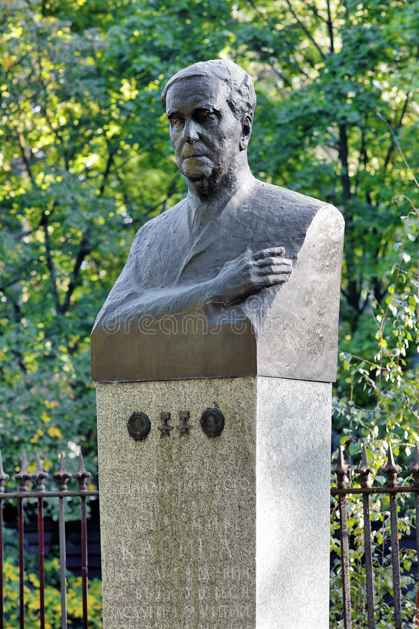 Monumento del fisico Pyotr Kapitsa in Kronštadt immagini stock libere da diritti