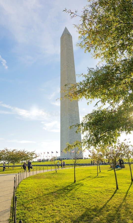 Monumento di George Washington con gli alberi fotografia stock libera da diritti