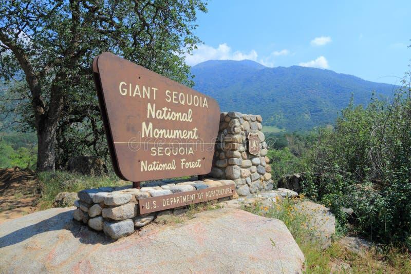Monumento nacional de la secoya gigante imágenes de archivo libres de regalías