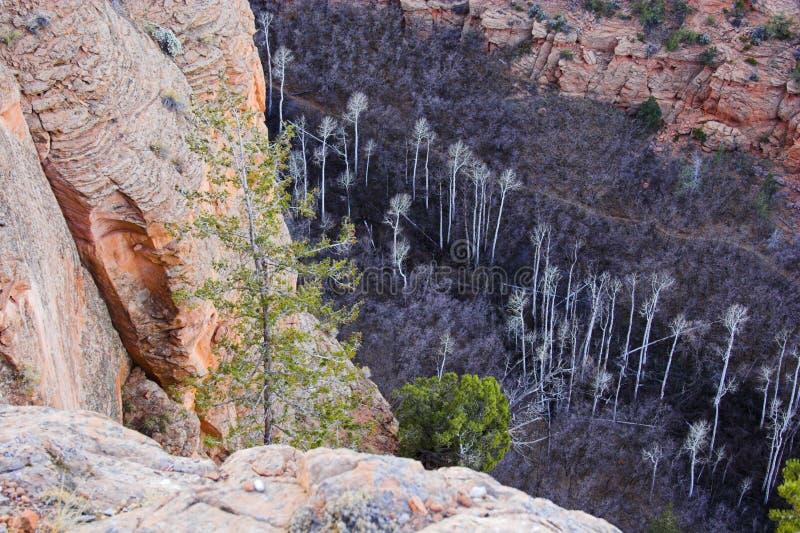 Monumento nazionale del Navajo fotografia stock libera da diritti