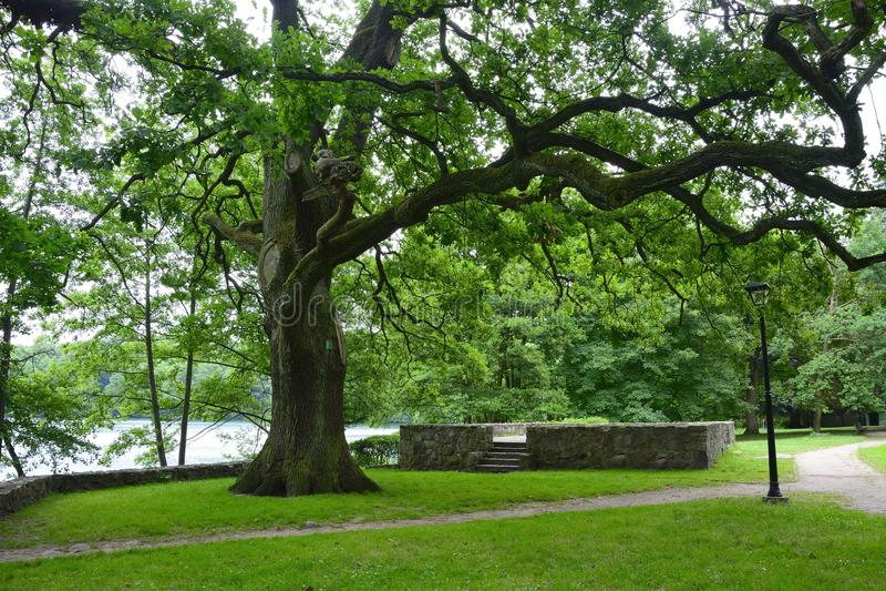 Monumentos, parques, lagos, pérola Lubusz Lagow foto de stock royalty free