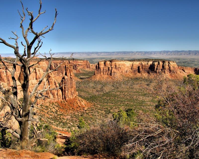 Monuments nationaux du Colorado un jour ensoleillé clair photo stock
