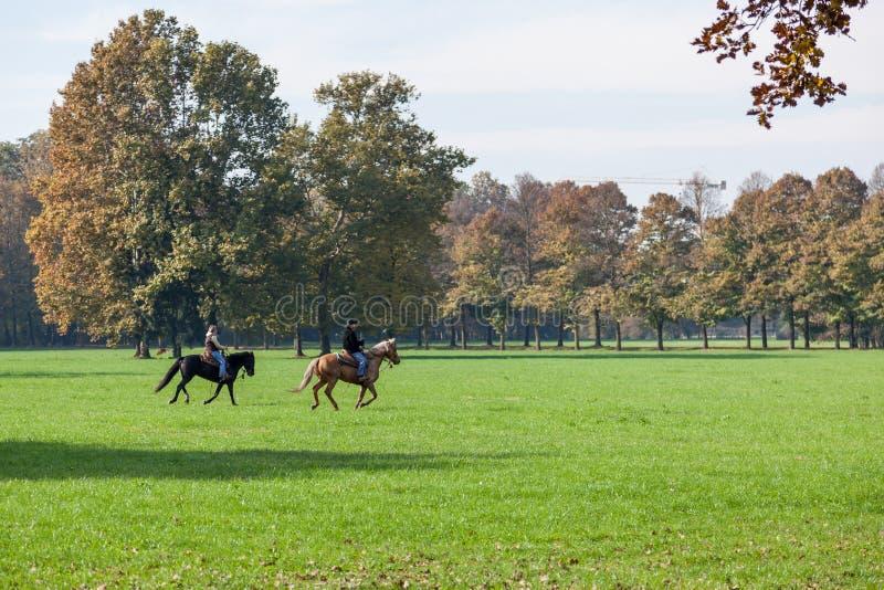 MONZA, ITALY/EUROPE - 30 DE OCTUBRE: Montar a caballo en Parco di Monz fotografía de archivo libre de regalías