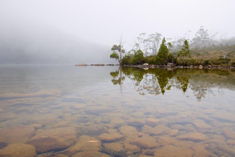 Moody alpine lake. With mist, in Mount Field National Park, Tasmania, Australia royalty free stock photos