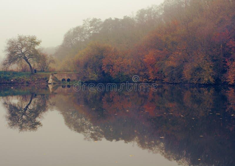 Moody autumn pond stock photography