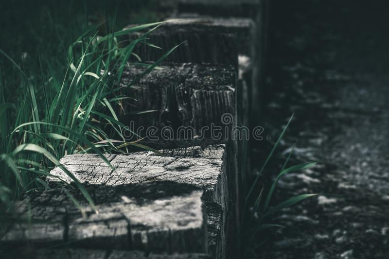 Moody Grass Lining Wooden Blocks royalty free stock photography