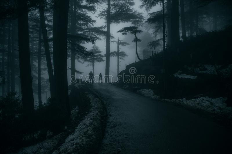 Moody landscapes of Patnitop, Jammu, India. This place called Patnitop is located in the State of Jammu, India. During winters, this place got covered in the stock photo