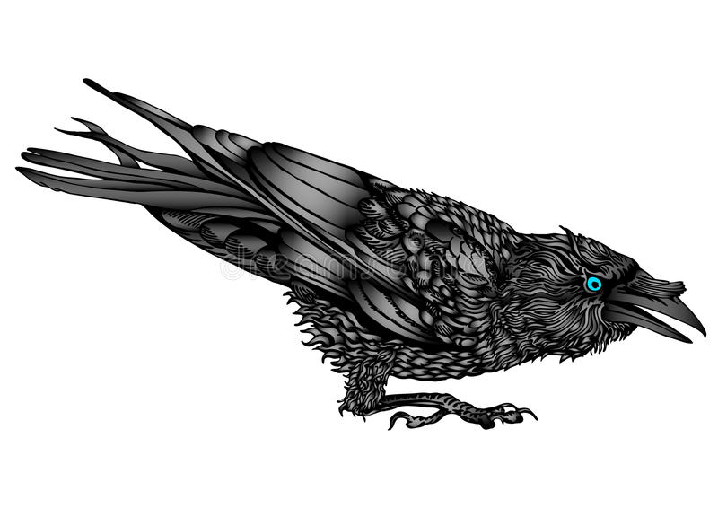 Moody raven. An illustration of a crouched raven with in a fighting mood stock illustration