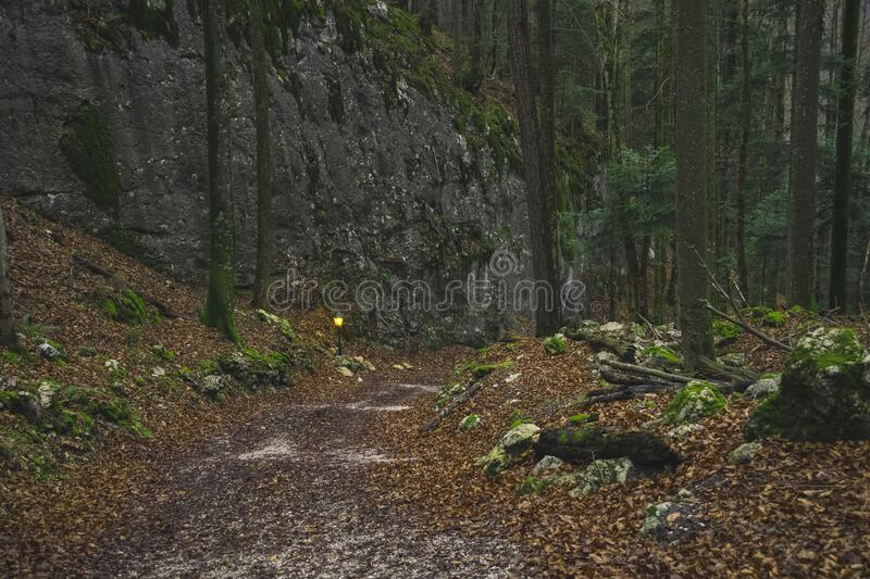 Moody twilight mountain forest highland wood land scenery nature environment with lantern yellow illumination near trail. Moody twilight mountain forest highland royalty free stock photos