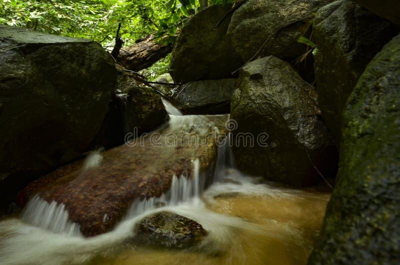 Mooi in aard, draperende tropische rivier natte en bemoste rots royalty-vrije stock afbeelding