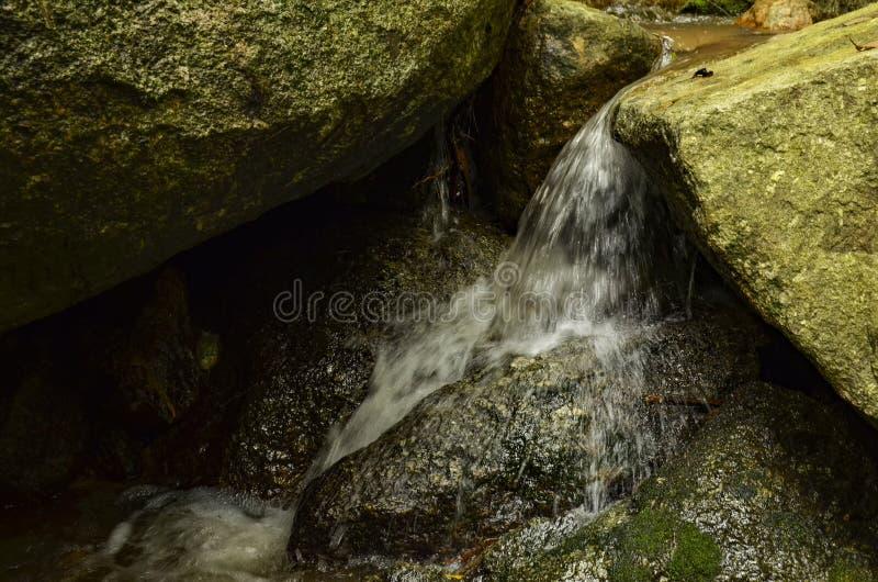 Mooi in aard, draperende tropische rivier natte en bemoste rots stock fotografie