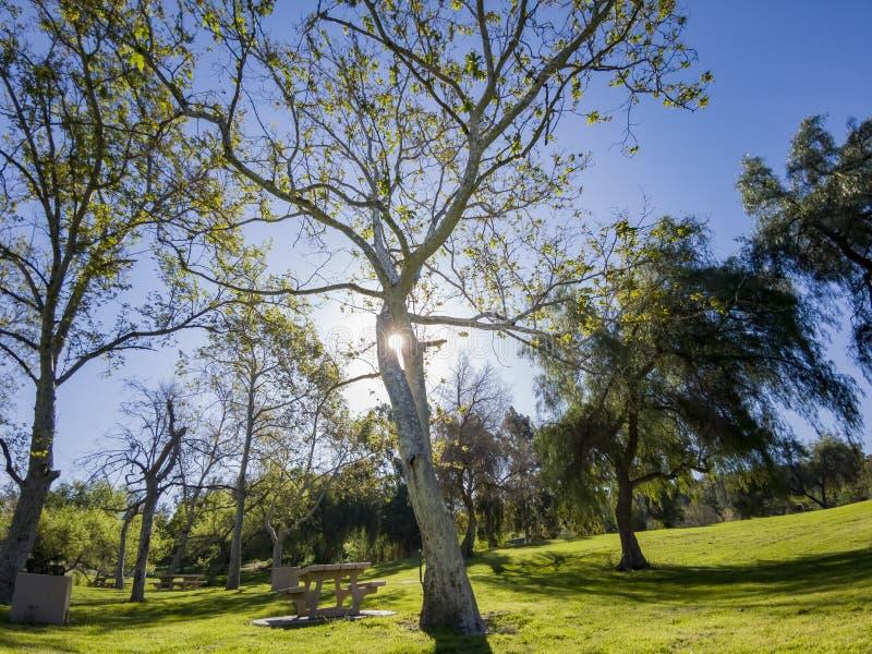 Mooi aardlandschap rond Peter F Schabarum Regionaal Park royalty-vrije stock foto's