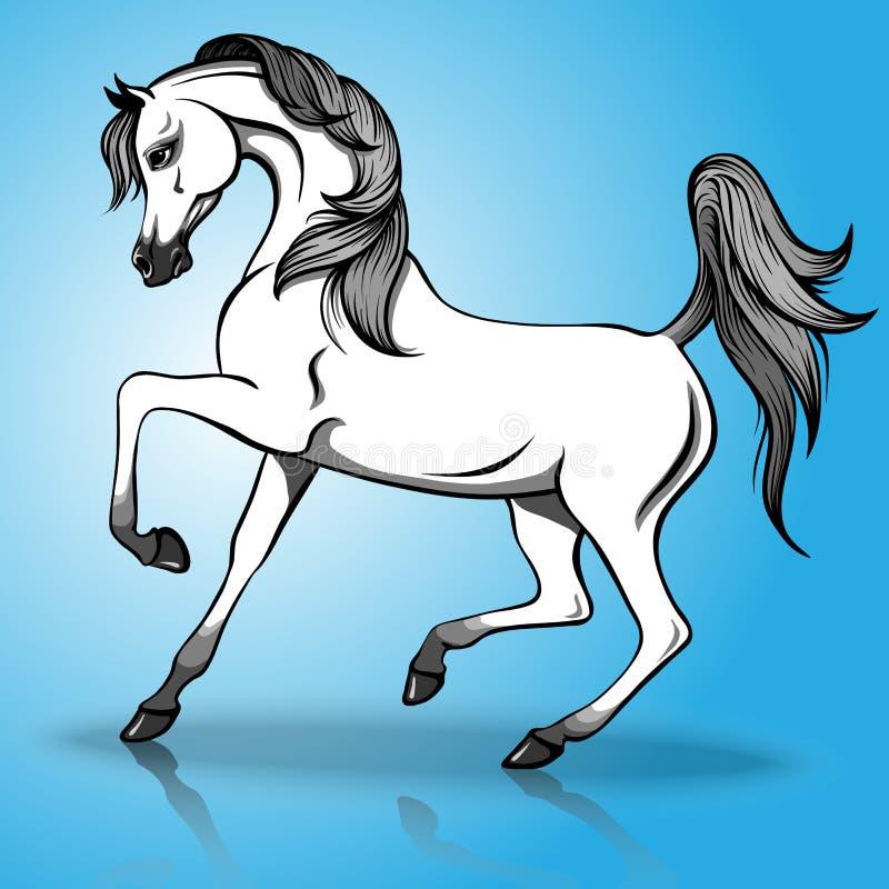 Mooi Arabisch paard stock illustratie