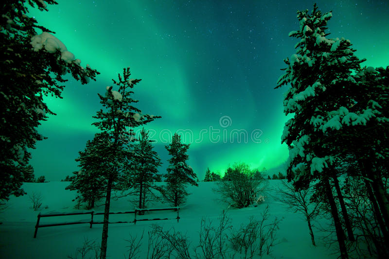 Mooi aurora borealis met groene lichten royalty-vrije stock foto's