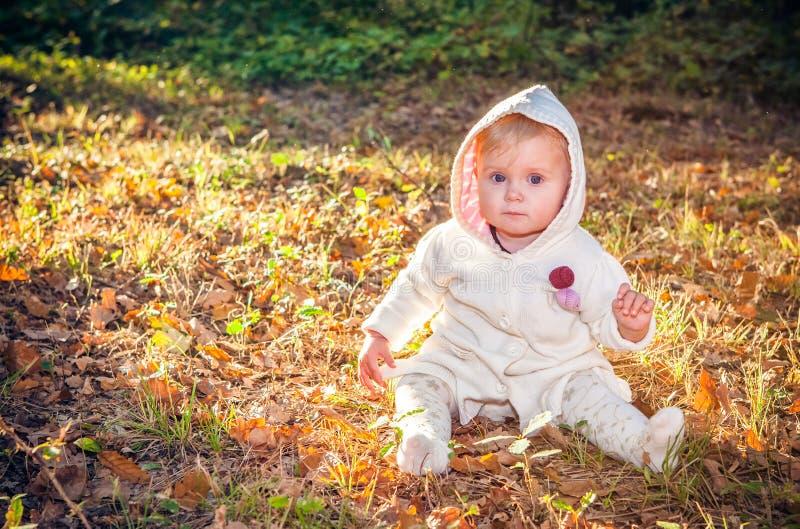 Mooi babymeisje in de herfstpark stock afbeeldingen