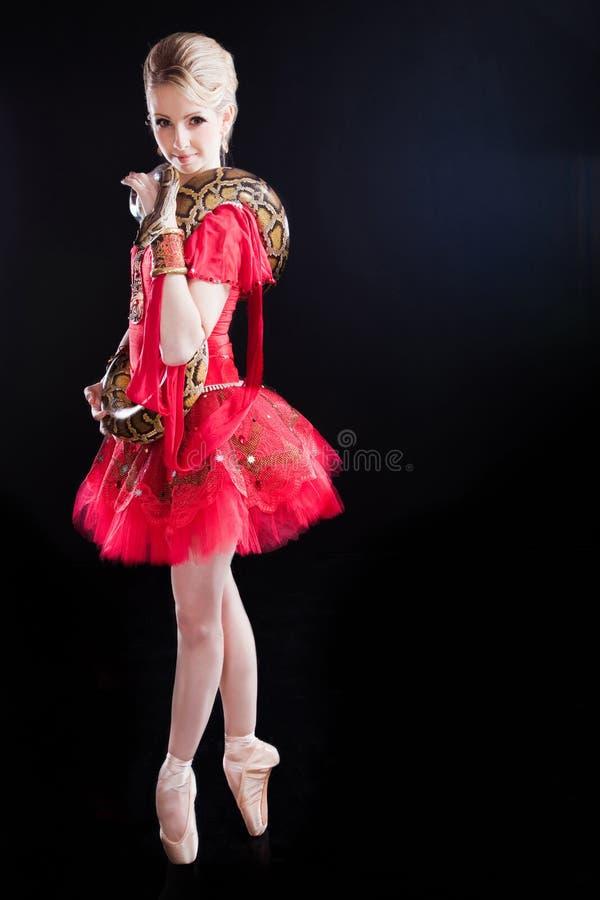 Mooi ballerinameisje in een rode tutu met python stock foto