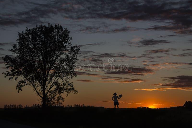Mooi beeld van een silhouet die van dame zich dicht bij een boom bevinden en een boek lezen stock foto