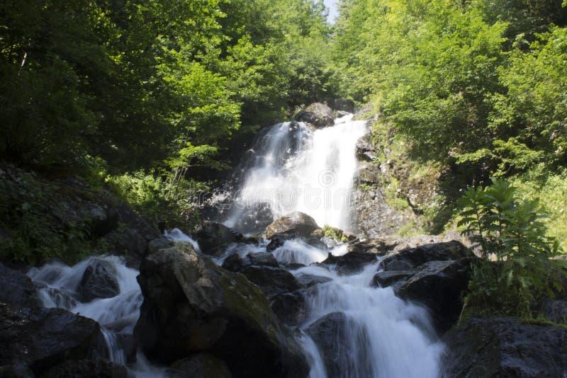 Mooi Behang van waterval, stroom van de stroom de snelle melk Rotsachtige de bergrivier van Abchazië in de boswatervalzuivelfabri stock afbeelding