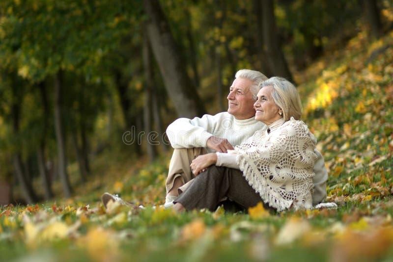 mooi bejaard paar royalty-vrije stock foto