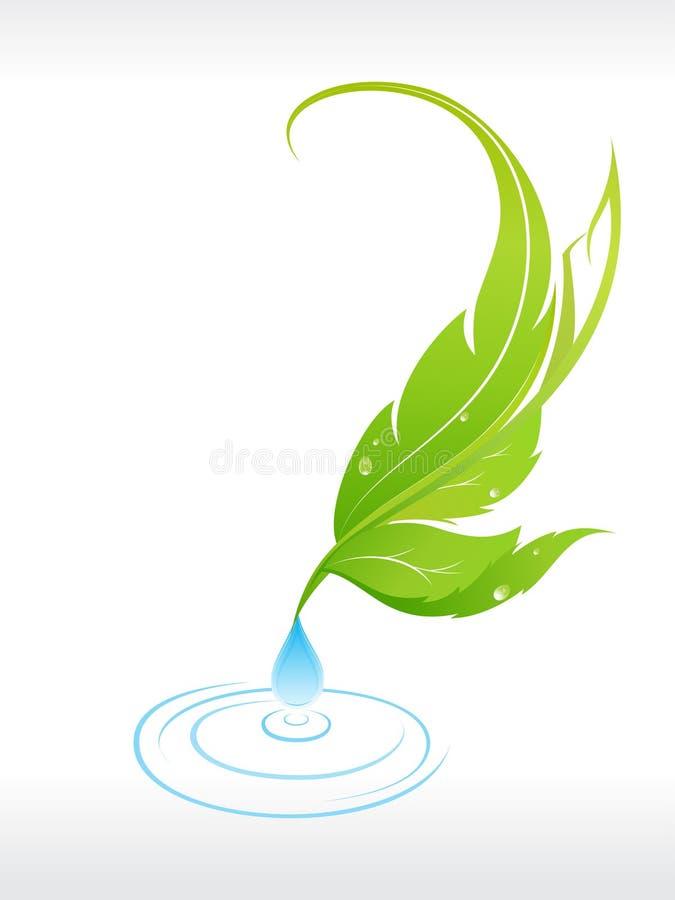 Mooi blad met waterdaling