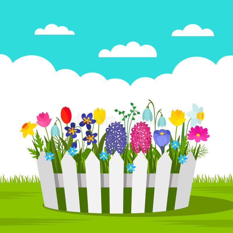Mooi bloembed met de lentebloemen en een witte omheining in openlucht concept tuin en het tuinieren Vector illustratie royalty-vrije illustratie