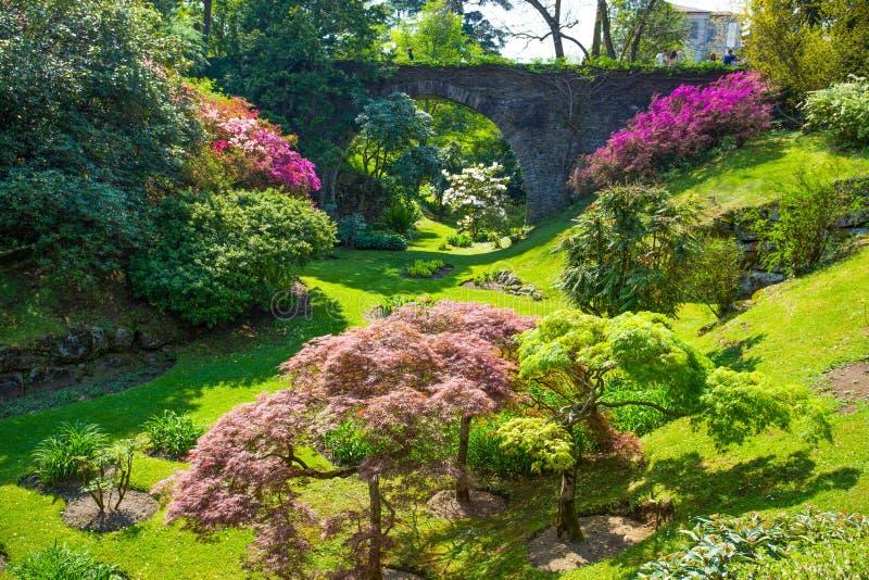 Mooi bloemenlandschap in de botanische tuin van Villa Taranto in Pallanza, Verbania, Italië royalty-vrije stock afbeeldingen