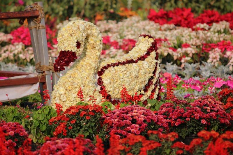 Mooi bloempark stock afbeelding