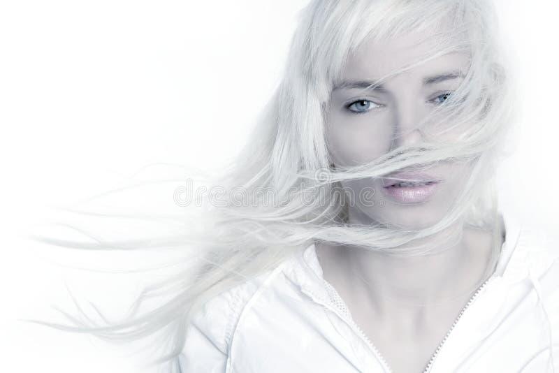 Mooi blonde de wind lang haar van de meisjesmanier stock afbeelding