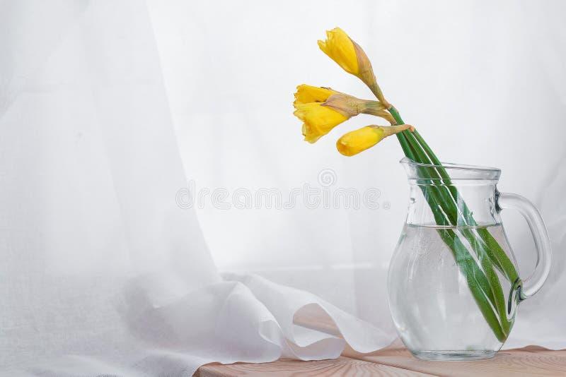 Mooi boeket van gele narcissuses in een glaskruik op witte achtergrond Plaats voor tekst De lente vakantie stock foto