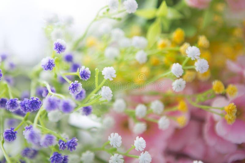 Mooi boeket van heldere wildflowers stock foto's