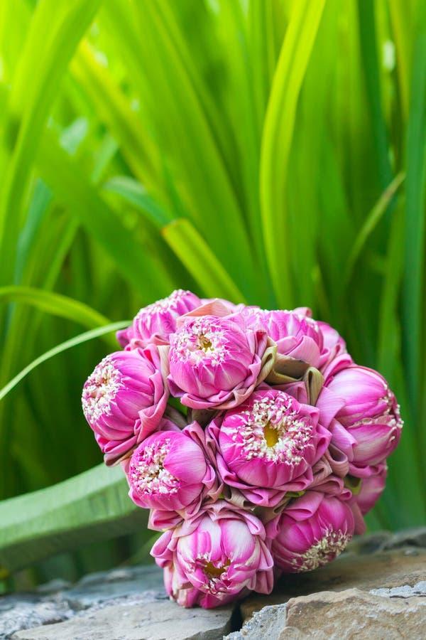 Mooi boeket van lotuses royalty-vrije stock afbeeldingen