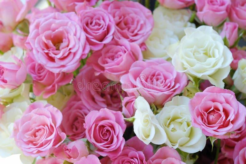 Mooi boeket van witte en roze rozen stock afbeelding