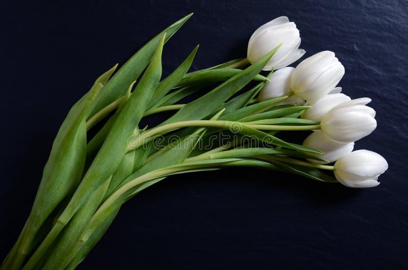 Mooi boeket van witte tulpen stock fotografie
