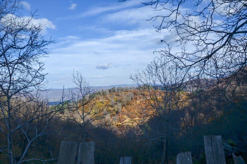 Mooi boslandschap met trillende Autumn Fall-seizoenkleur royalty-vrije stock foto